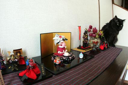 猫返し神社_d0071596_11215736.jpg