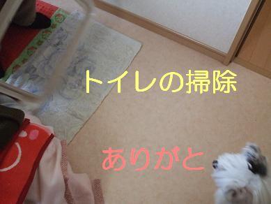 f0179203_1574994.jpg