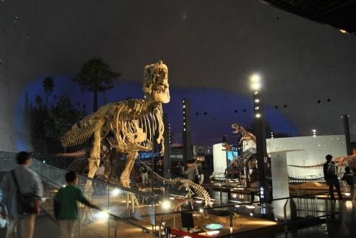 カマラサウルス登場!_f0229508_18584843.jpg