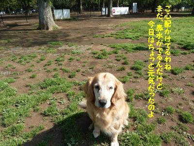 f0118135_22314100.jpg