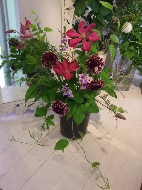 オークリーフ花の教室(メイガーデンアレンジメント)_f0049672_9334792.jpg
