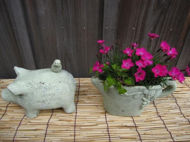 花の中のウサギ_e0181373_2033576.jpg