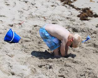 マイアミのビーチの風をおすそわけ!_c0050387_14172130.jpg