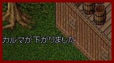 b0096491_6254817.jpg