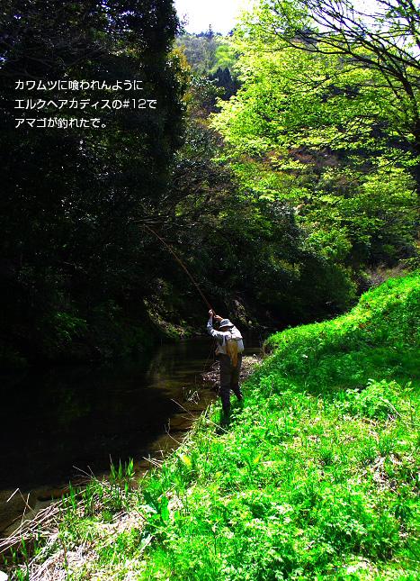 a0141808_045727.jpg