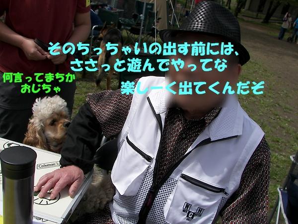 b0067012_22312224.jpg