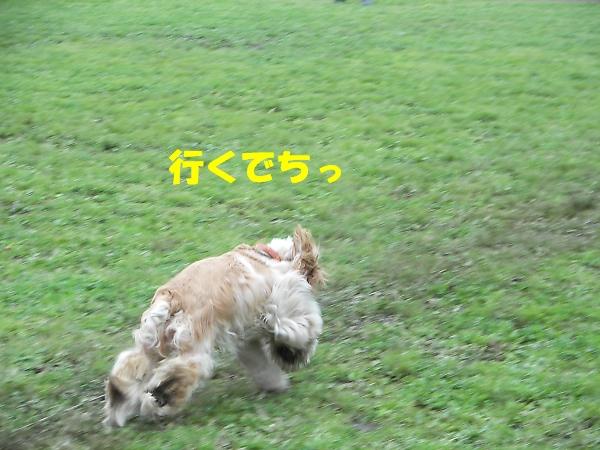 b0067012_22361036.jpg