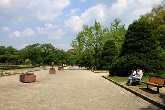 植物園1 花づくし_e0048413_20264436.jpg