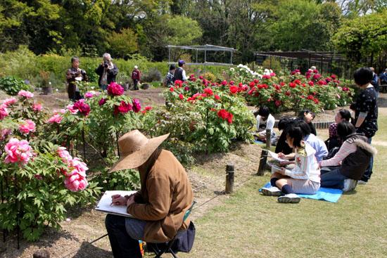植物園1 花づくし_e0048413_2027252.jpg