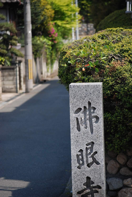 5月の熊野町_b0069128_8444048.jpg