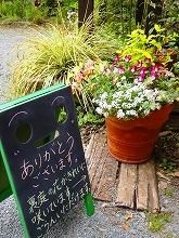裏庭の花_f0207652_11283350.jpg