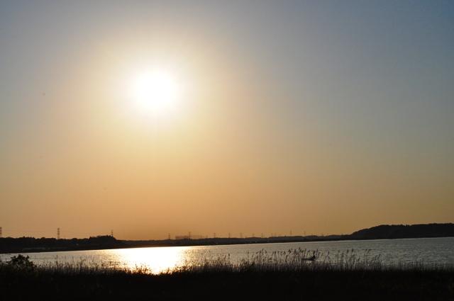 夕陽に包まれて_a0126590_1517132.jpg