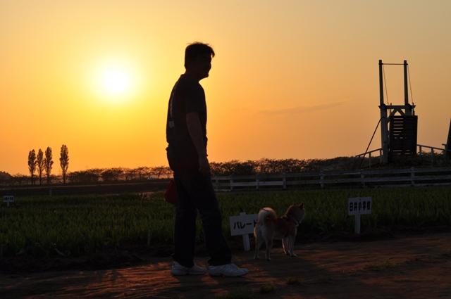 夕陽に包まれて_a0126590_23382034.jpg