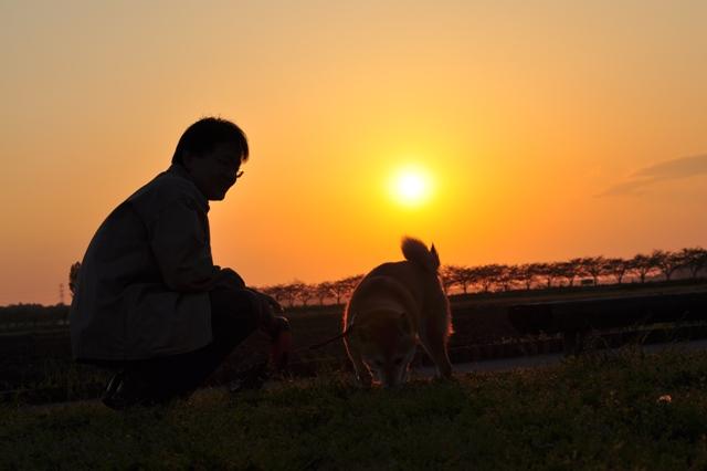 夕陽に包まれて_a0126590_23434411.jpg