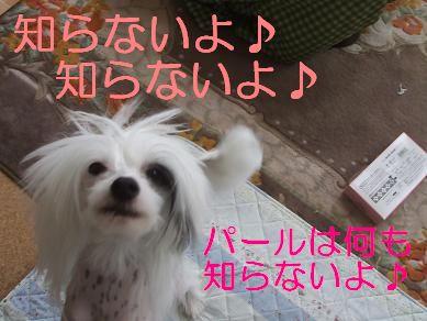 f0179203_7234966.jpg