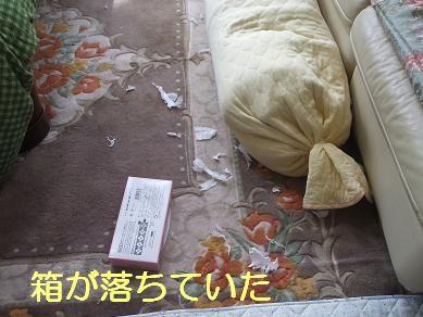 f0179203_7252187.jpg