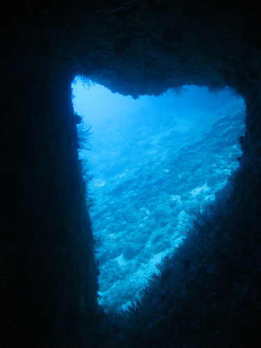 5月3日久々の残波の海へ~~!_c0070933_22291837.jpg