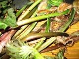 山菜_c0206545_14422551.jpg