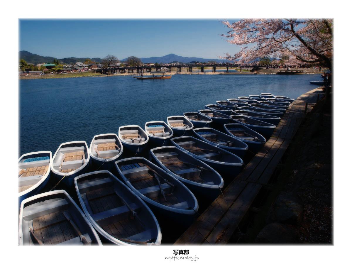 京都 嵐山 桜_f0021869_23191026.jpg