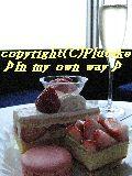 b0081270_13403332.jpg