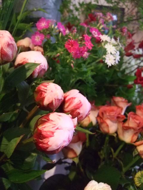 オークリーフ(白いダリアの花)_f0049672_18891.jpg