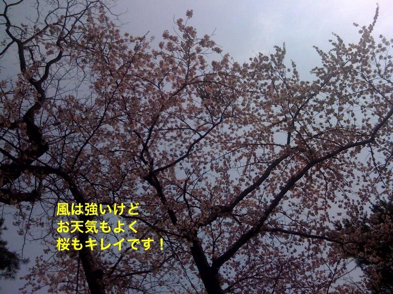 f0168374_21573167.jpg