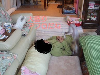 f0179203_9484736.jpg