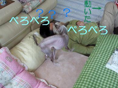 f0179203_9485366.jpg