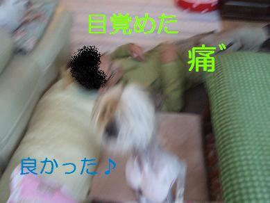 f0179203_9491093.jpg