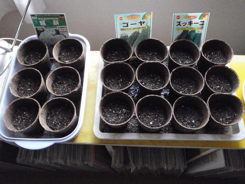 ようやく春の庭仕事_c0025115_23111472.jpg