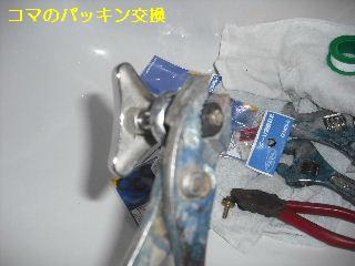 f0031037_15115510.jpg