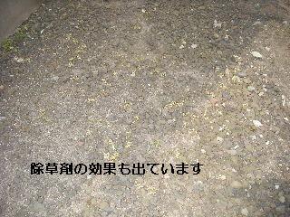 f0031037_15121825.jpg