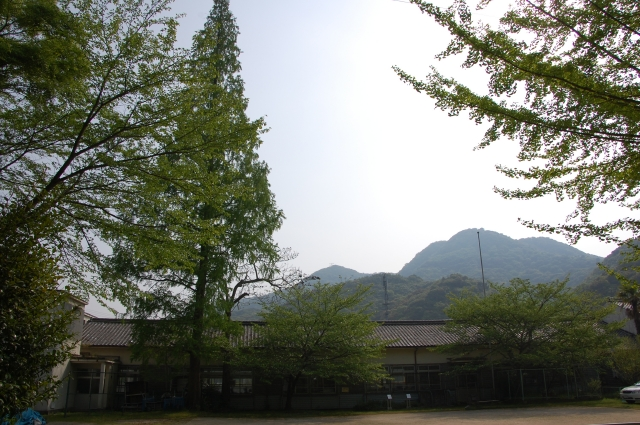 平成22年5月度「大人の林間学校」(つつじ見学)_c0108460_19322378.jpg