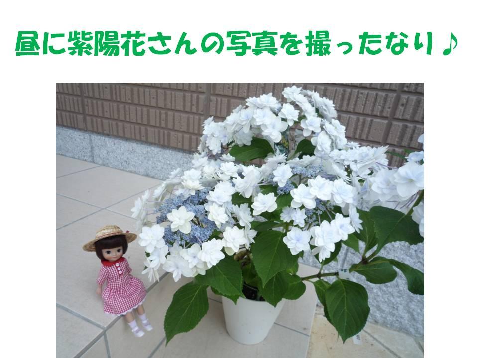b0129300_2113259.jpg