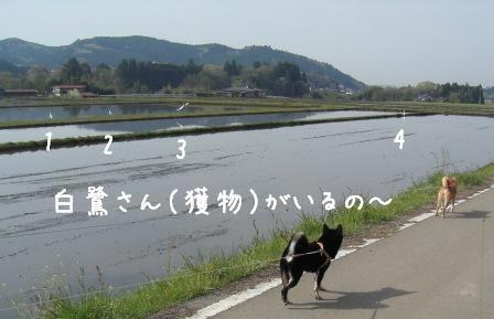 f0068501_024026.jpg