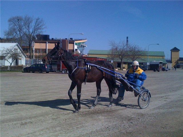 私達の競走馬_a0159707_18561470.jpg