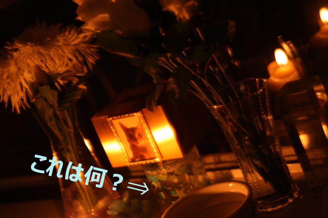 b0151309_12361981.jpg