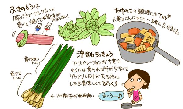 Eating lots and lots of veggies_c0161724_22465174.jpg