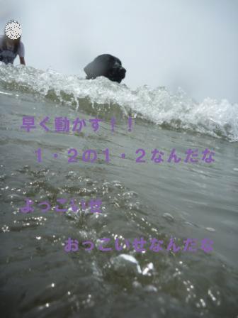 f0176830_21332698.jpg