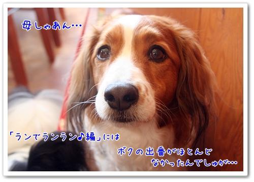 d0013149_0481767.jpg
