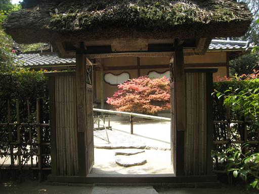 連休の京都・サツキと菖蒲のはずが、、、_f0205367_013673.jpg