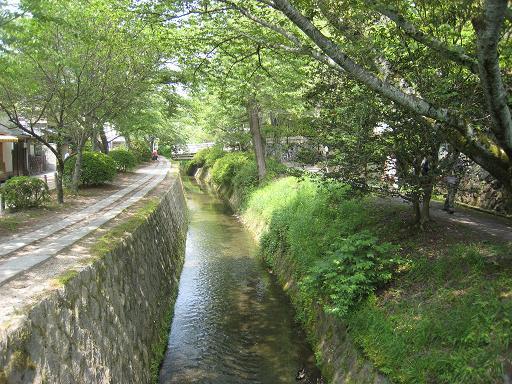 連休の京都・サツキと菖蒲のはずが、、、_f0205367_0162212.jpg