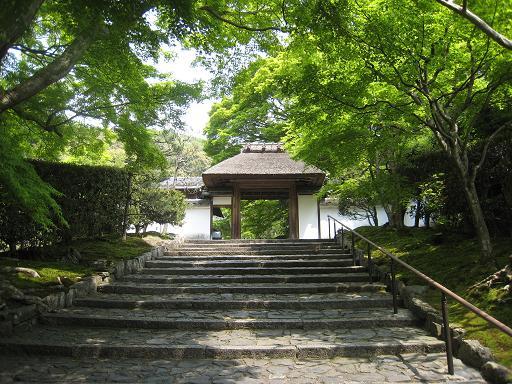 連休の京都・サツキと菖蒲のはずが、、、_f0205367_0232252.jpg