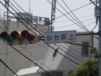 2010.5.5 連休4日目 シャンプー_a0083571_1715926.jpg