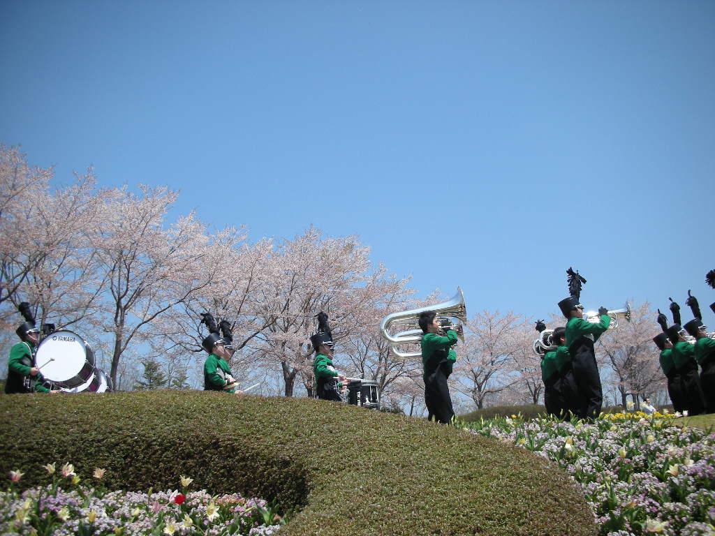 花のフェスティバルのご報告_e0145173_19443785.jpg