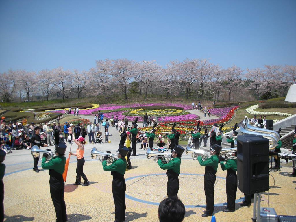 花のフェスティバルのご報告_e0145173_19461195.jpg