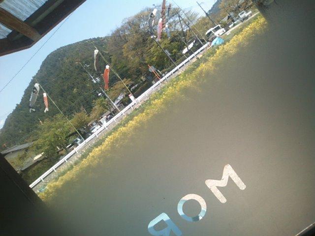 こどもの日は鯉のぼり_c0100195_11474243.jpg