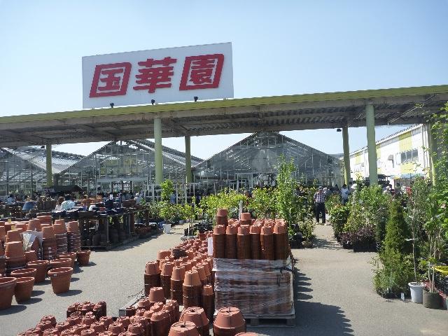 国華園&りんくう温泉_b0054727_058197.jpg