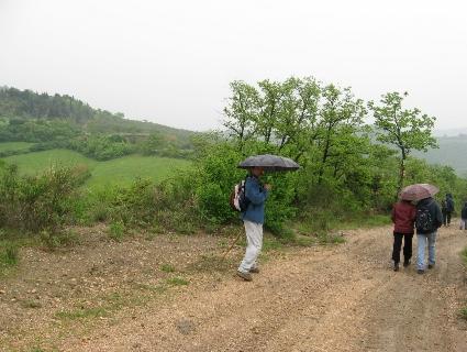 雨の日の散歩 ~ ミジャーナからサン・ピエートロまで_f0234936_23272965.jpg