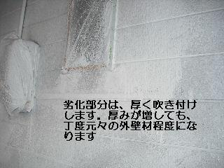 f0031037_21532560.jpg